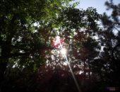 Galaxyfoto 3