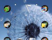Galaxy S3 Dandelion - обои с одуванчиком для Galaxy Ace, Note S2, Gio