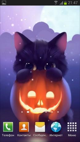 Halloween Kitten - живые обои с котом к хэллоуину