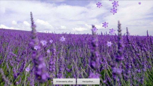 Lavender Live Wallpaper – лавандовые поля для Android
