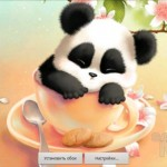 Sleepy Panda Wallpaper – не разбудите милую панду!