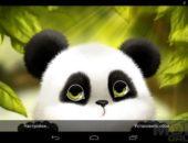 Panda Chub Live Wallpaper – милый медвежонок панда для Android