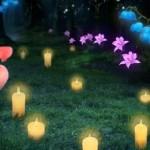 Wonder Forest Live Wallpaper – ночной лес для Android
