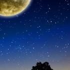 Falling Stars Live Wallpaper – ночной звездопад