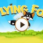 Flying Fox – летающий лис