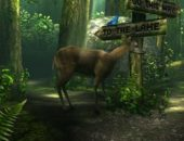 Forest HD – реалистичный лес для Android