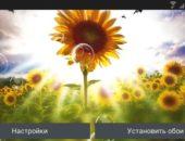 Summer Sunflower Free – солнечные подсолнухи для Android