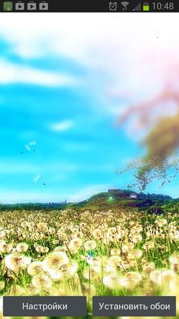 World of Dandelions – лужайка одуванчиков для Android
