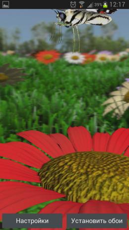 Butterfly X LWP – цветочные луга