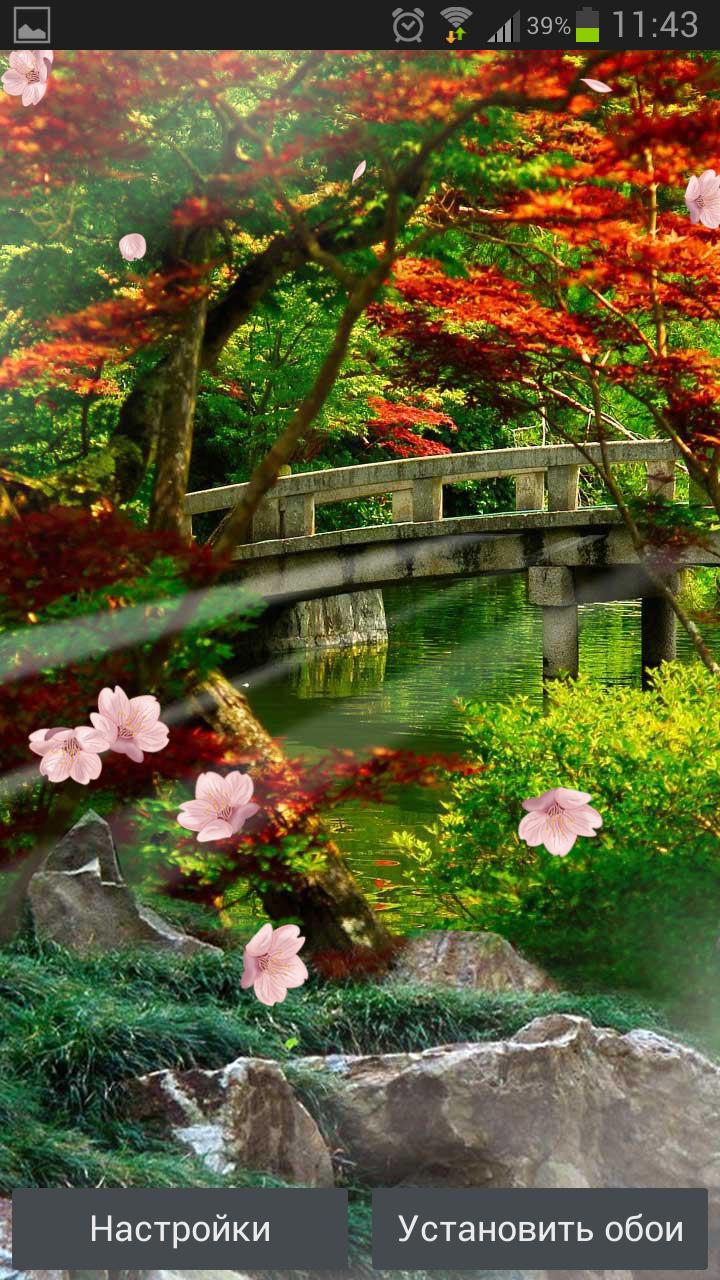 Сад Дзен – живые обои японского сада