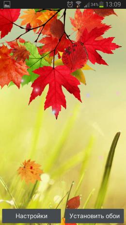 Осенние Живые Обои – красивая пора для Android