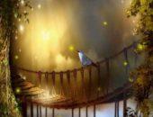Дивная сказка и светлячки Firefly Live Wallpaper для Android
