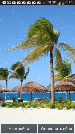 Пальма и зонтики - Beach Wallpaper для Android