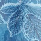 Draw on frozen screen – замерзший экран