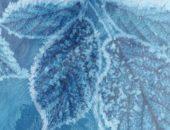 Обои Draw on frozen screen создающие на экране эффект замерзания