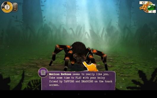 Первый питомец - Scary Spiders для Android