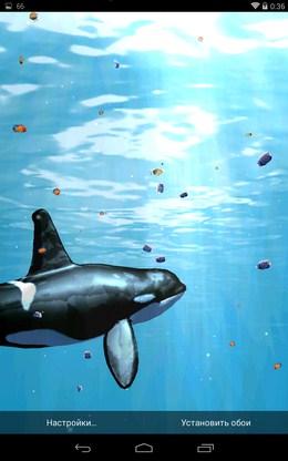 Большая касатка - Глубины Океана 3D для Android