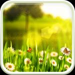 Иконка - Spring live wallpaper для Androird