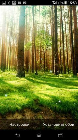 Лес - Galaxy S5 Live Wallpaper для Android