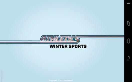 Симулятор зимних видов спорта Winter Sports для Android