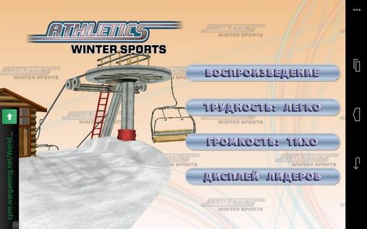 Настройки игры Winter Sports для Android