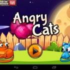 Angry Cats – коты против собак