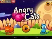 Кошки против собак в Angry Cats для Android