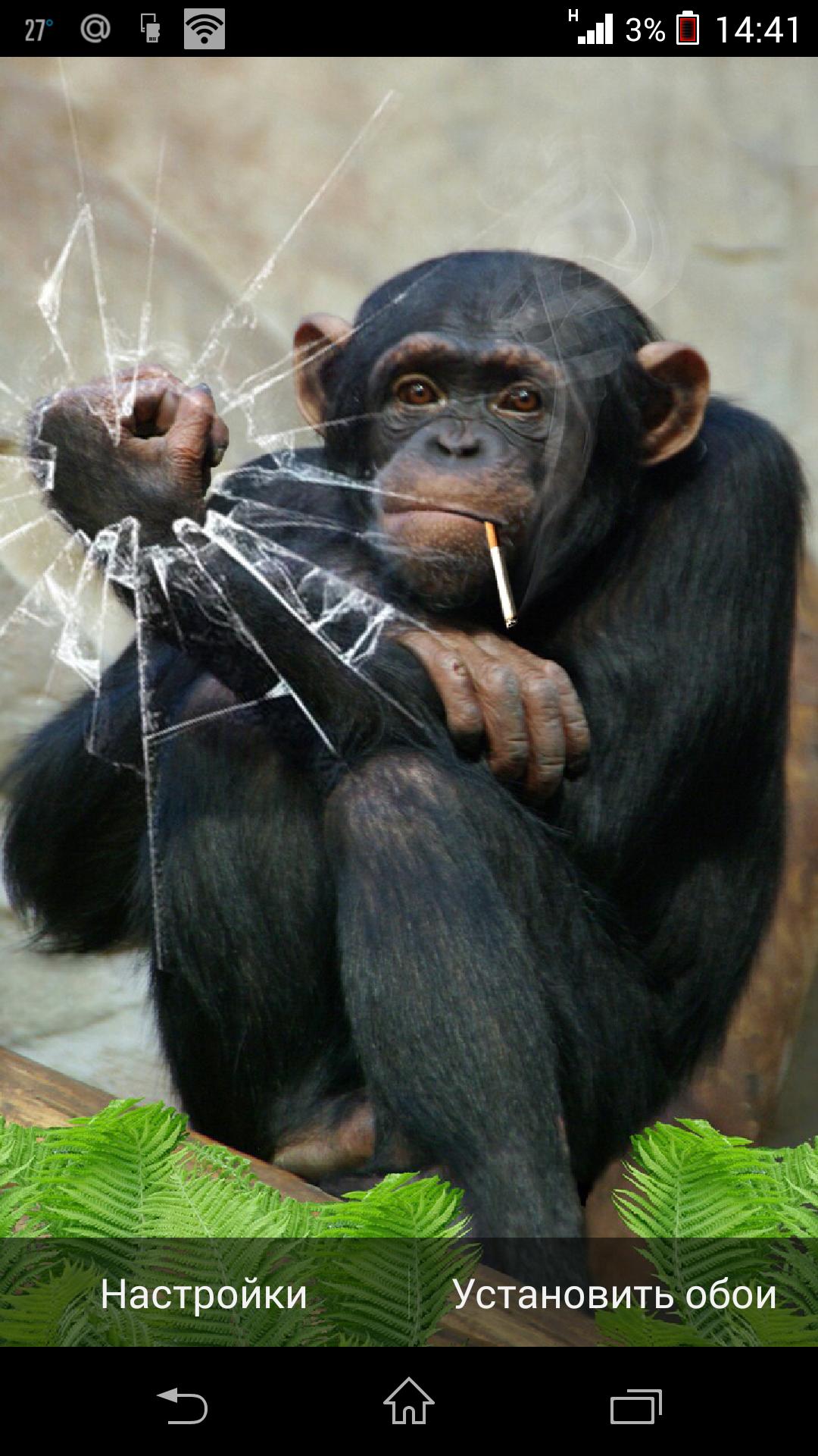 Разбитое стекло - Funny Monkey для Android