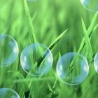 H Screen Balls Live Wallpaper — разноцветные шарики