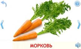 ovoschi-i-frukty-dlya-detej-0802c5-h900