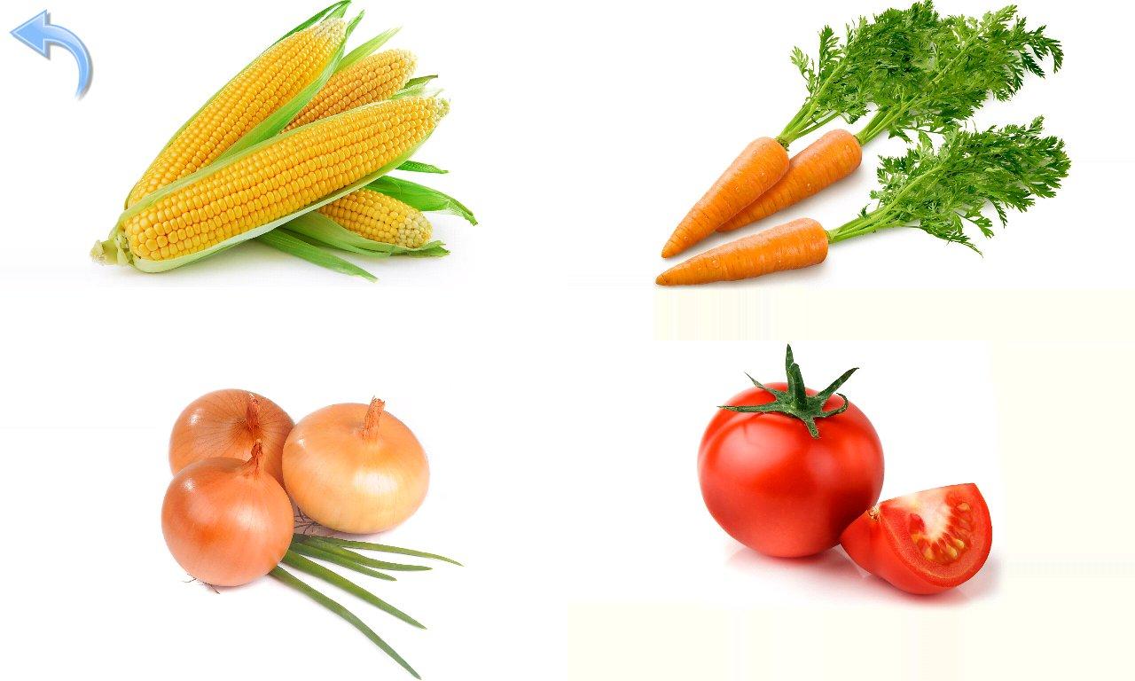 Картинки овощей для детей цветные по отдельности - f