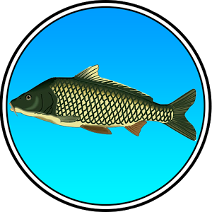 Реальная Рыбалка - иконка