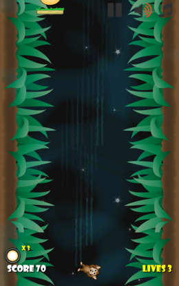 Jungle Monkey 5 - игра