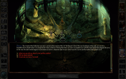 Icewind Dale Enhanced Edition - игра