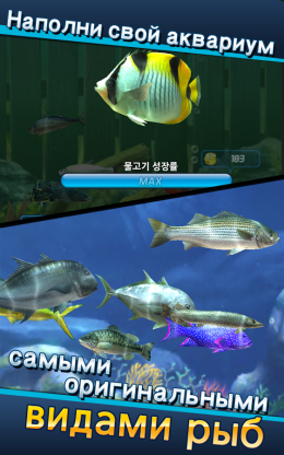 Улётный клёв - аквариум