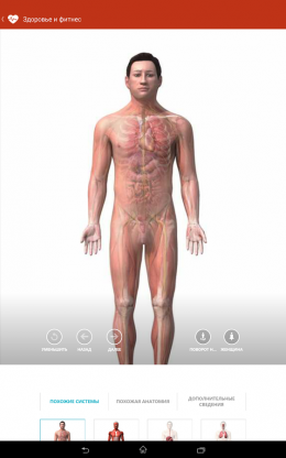 Макет - MSN Health & Fitness для Android