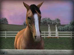 Стойло - My Horse для Android