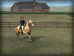 Тренировка - My Horse для Android