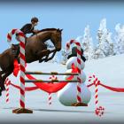 My Horse — жизнь лошади