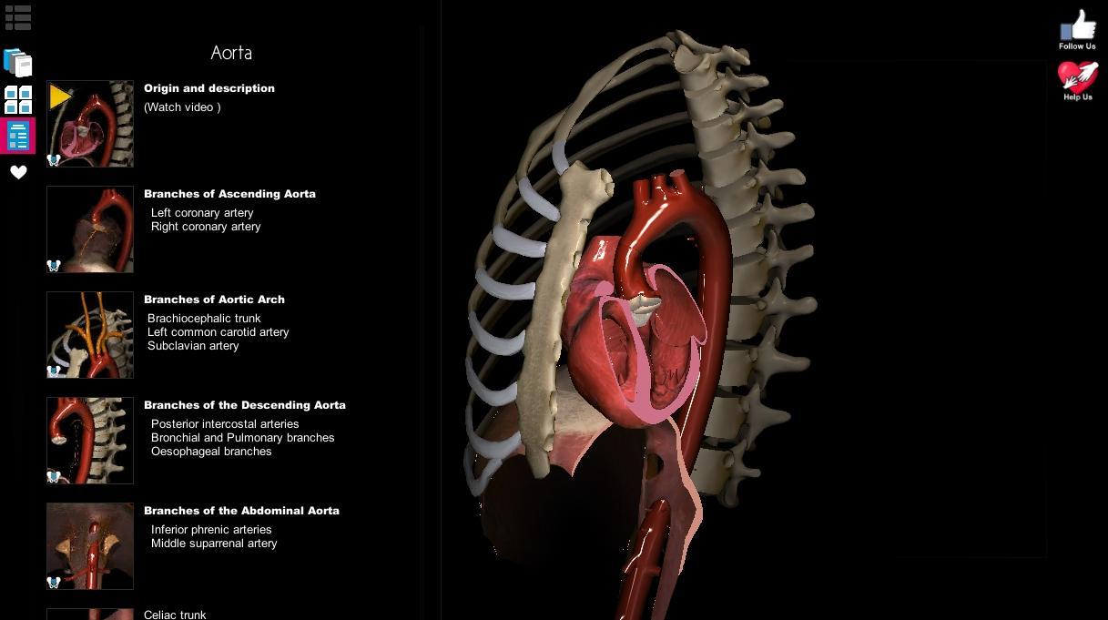Anatomy Learning 3d Atlas Samsung Galaxy
