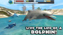 Dolphin Simulator - игра