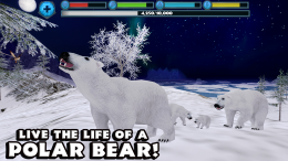 Polar Bear Simulator - игра