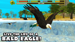 Eagle Simulator - игра