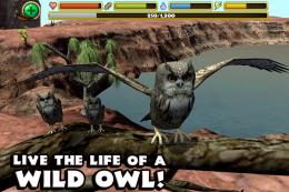 Owl Simulator - игра
