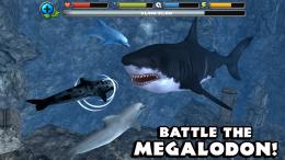 Dolphin Simulator - бой