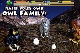 Owl Simulator - семья