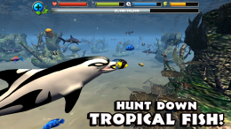 Dolphin Simulator - охота