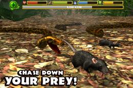 Snake Simulator - еда