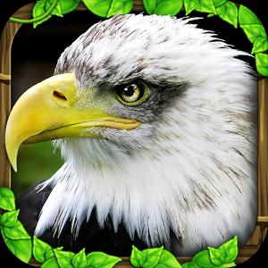 Eagle Simulator - иконка