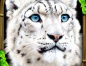 Snow Leopard Simulator - иконка